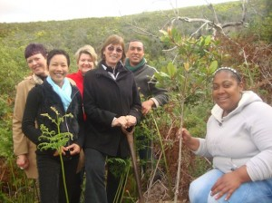 Flower Valley staff planting a tree