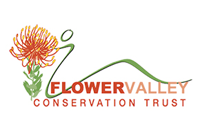 Position: Field Worker (Home-based ECD programme in Baardskeerdersbos)