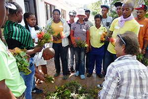 Fynbos champions selected to encourage sustainability