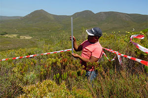 Making fynbos monitoring 'easy'