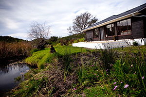 Fynbos Retreat