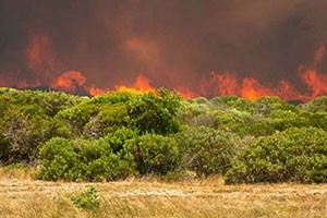 Wildfire in the Overberg: So what has changed?